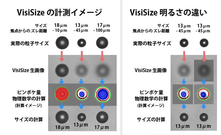 VisiSize PDIAアルゴリズム解析概念図